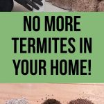 Check out the best way to get a rid of termites!